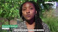 聯合國氣候變化大會COP26將開幕 全球青年說出他們的期望
