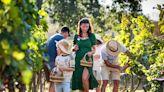 泰國華欣季風谷酒莊(Monsoon Valley vineyard)邀你採收葡萄、品嚐世界級葡萄酒