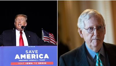Mitch McConnell deflected a question about Trump's influence on the GOP, saying Republicans should focus on the future and not 'rehash' 2020