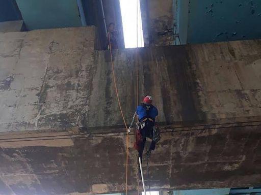 流浪貓受困高架橋墩 基隆蜘蛛人吊掛、警方道路交管救援中