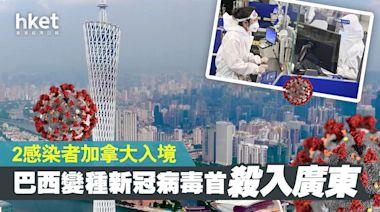 巴西變種新冠病毒首殺入廣東 2患者加拿大入境 - 香港經濟日報 - 中國頻道 - 社會熱點