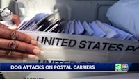 Sacramento is the 16th worst city for dog attacks on U.S. postal workers