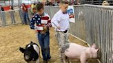 ...of competitive pig showing featured in 'Pig Royalty,' Carrie Underwood debuts album of gospel hymns, 'News of the World' hits Blu-ray and the best in pop culture the week of March 22, 2021