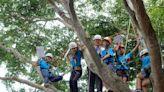 愛護大自然 彰化香田國小舉行攀樹畢業典禮