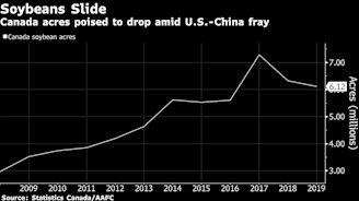 Canada Farmers Swap Soybeans as U.S-China Spat Drags on Prices