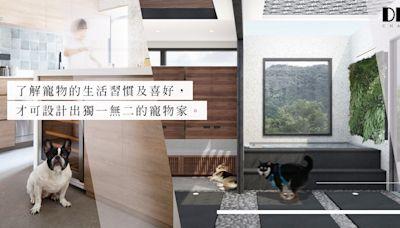 由主子生活習慣及喜好著手!留意5個室內設計及裝修考量,打造舒適度、設計感兼備的寵物家! | 陳丞軒-寫設計