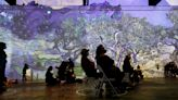 The immersive arts trend — think van Gogh — is surging in 2021