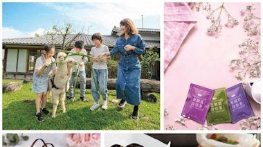 溫馨五月!宜蘭綠舞感恩母親節,「寵愛媽咪」用餐好禮雙重送 - 工商時報