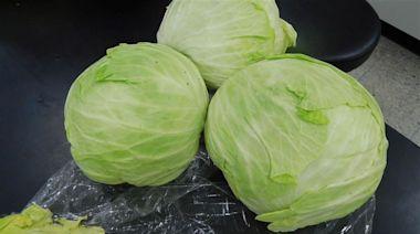 別愈洗愈毒!高麗菜花椰菜這樣洗才對