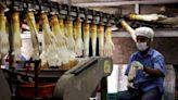 大馬乳膠手套製造商涉強迫勞動 美國下禁止進口令