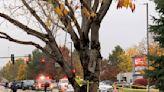 Police: 2 killed, 4 injured in Idaho mall shooting; suspect in custody