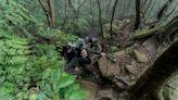 台灣百岳登山養成計畫:一步步成為山系人!