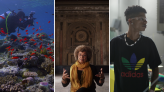 Here Are 10 Vitally Important Documentaries That Will Help You Learn Something New