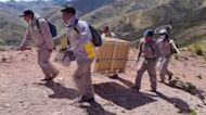 Rescued condor released into the wild in Bolivia