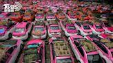 疫情奇景!泰國小黃運將失業 突發奇想在車頂種菜養員工