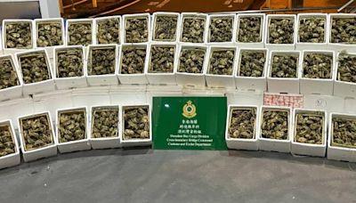 信報即時新聞 -- 海關查入境貨車 檢1.2萬隻走私大閘蟹