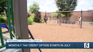 Why some families may choose to opt out of the monthly child tax credits