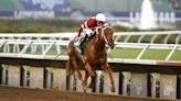 Breeders' Cup tickets go on sale Wednesday