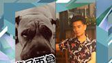 黃宗澤愛犬離世:謝謝你陪伴了我們18年