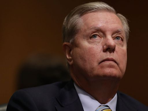 Sen. Lindsey Graham dismissed Rudy Giuliani's election-fraud arguments as the work of a third-grader, book says