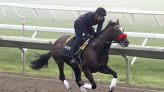Hot Rod Charlie favored in $1 million Haskell at Monmouth