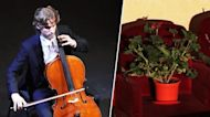 Quartet in Spain Plays for Audience of Plants to Honor Coronavirus Workers