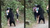 熊熊就是要入鏡!登山女遭熊抱自拍照曝光