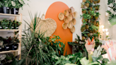 11 Best New Shops and Salons in Washington, DC