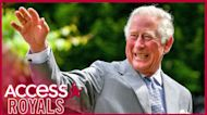 Will Prince Charles Strip Archie And Lili Of Their Royal Titles When He Becomes King?