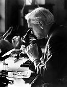 Alexander Fleming | Biography, Education, Discovery, & Facts ...