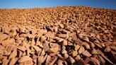澳鐵礦石5月對華出口增20% 再創新紀錄