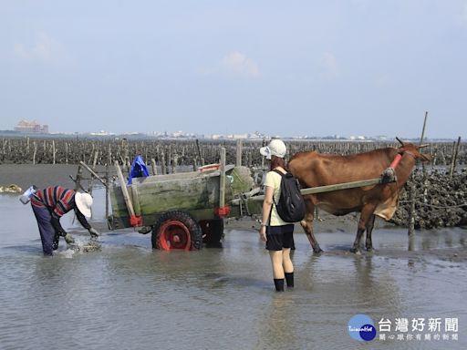 防範疫情擴散風險 彰縣停辦「國際海牛文化節」及「國慶慶祝活動」