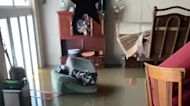 Jackson Homes Flooded as Pearl River Overflows
