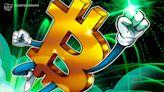Bitcoin records rare 10-day winning streak as BTC price taps $42K ceiling