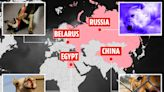 Inside worst countries for animal abuse where dogs are blowtorched to death