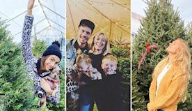 Celebs Huntin' For Christmas Trees -- Fir Sure!