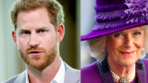 """The Royals Are """"Worried"""" Prince Harry Could Write About His Stepmom, Duchess Camilla"""