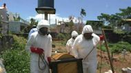 Covid-19 victims buried without fanfare in cemeteries in Venezuela