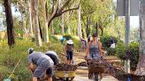 Guest column: Have a say in Poway's Twin Peaks and Espola roads' landscaping