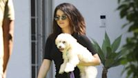 Selena Gomez Takes Adorable New Fluffy Dog Winnie For A Walk & They Are So Cute — Pic