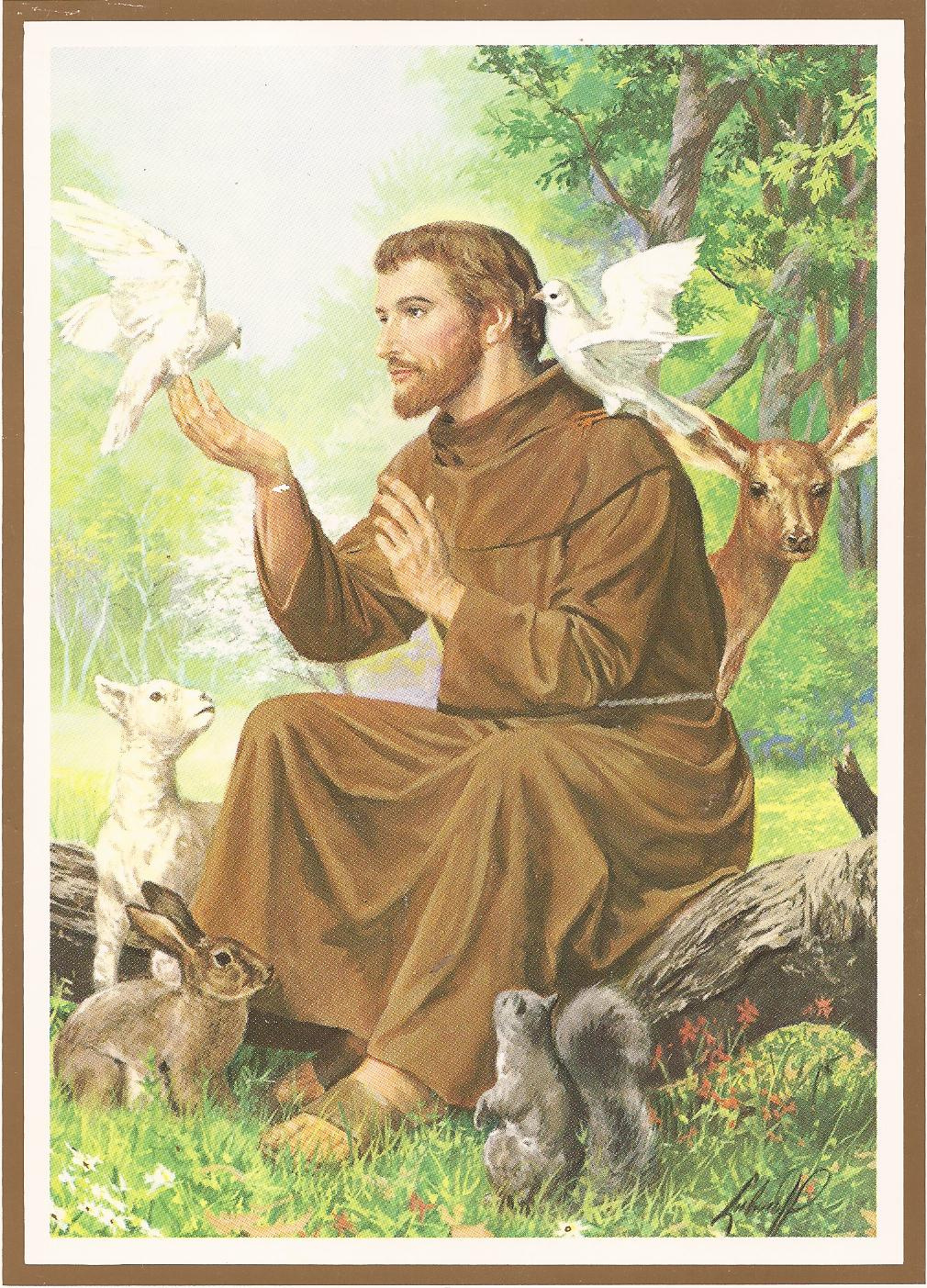 st francis of assisi italian san francesco d assisi born giovanni di ...