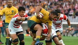 Wallabies to return to scene of World Cup exit for Japan Test