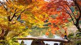 【日本紅葉2019】15個東京紅葉景點推介!今年必試泛舟、登高賞紅葉!
