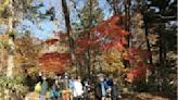 日本秋季「紅葉×活動」排名、 冬季特別的雪之體驗絕對不能錯過!