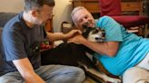 Pets adopted during the pandemic find forever homes - even as restrictions lift