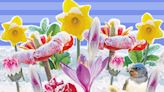 Flaming April... then frosts: Are you ready for the Backward Spring?