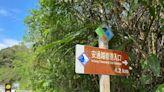 溪水湍急過不去!安通越嶺古道6登山客受困、台東警偕部落嚮導漏夜救援