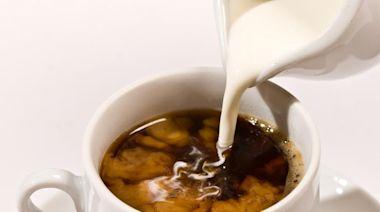 咖啡用奶大不同!鮮奶、業務用牛乳、奶精到底有什麼差別?