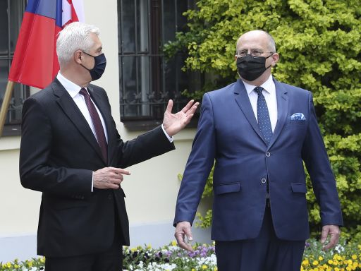 Europe's 4 Visegrad nations discuss security, fighting virus