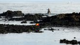 Eight Dead as Migrant Boat Capsizes off Canary Islands, More Missing
